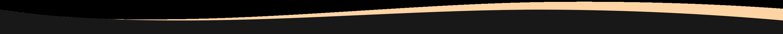 sektions delare